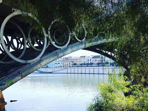 Ritorno in Matria (cit.*) – Volver a Sevilla